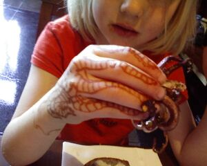 Henna-octopus-squid.jpg